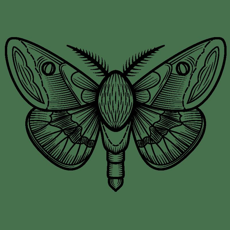 Mariposas para colorear - 12