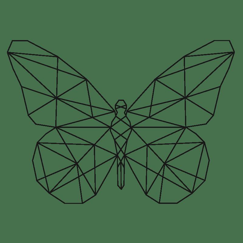 Mariposas para colorear - 14