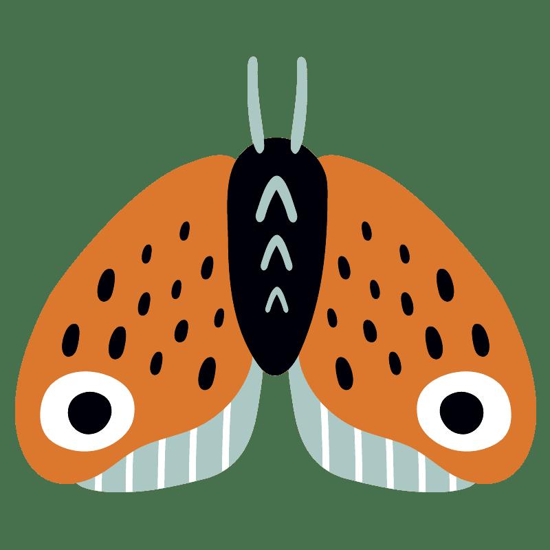 Mariposas para colorear - 29